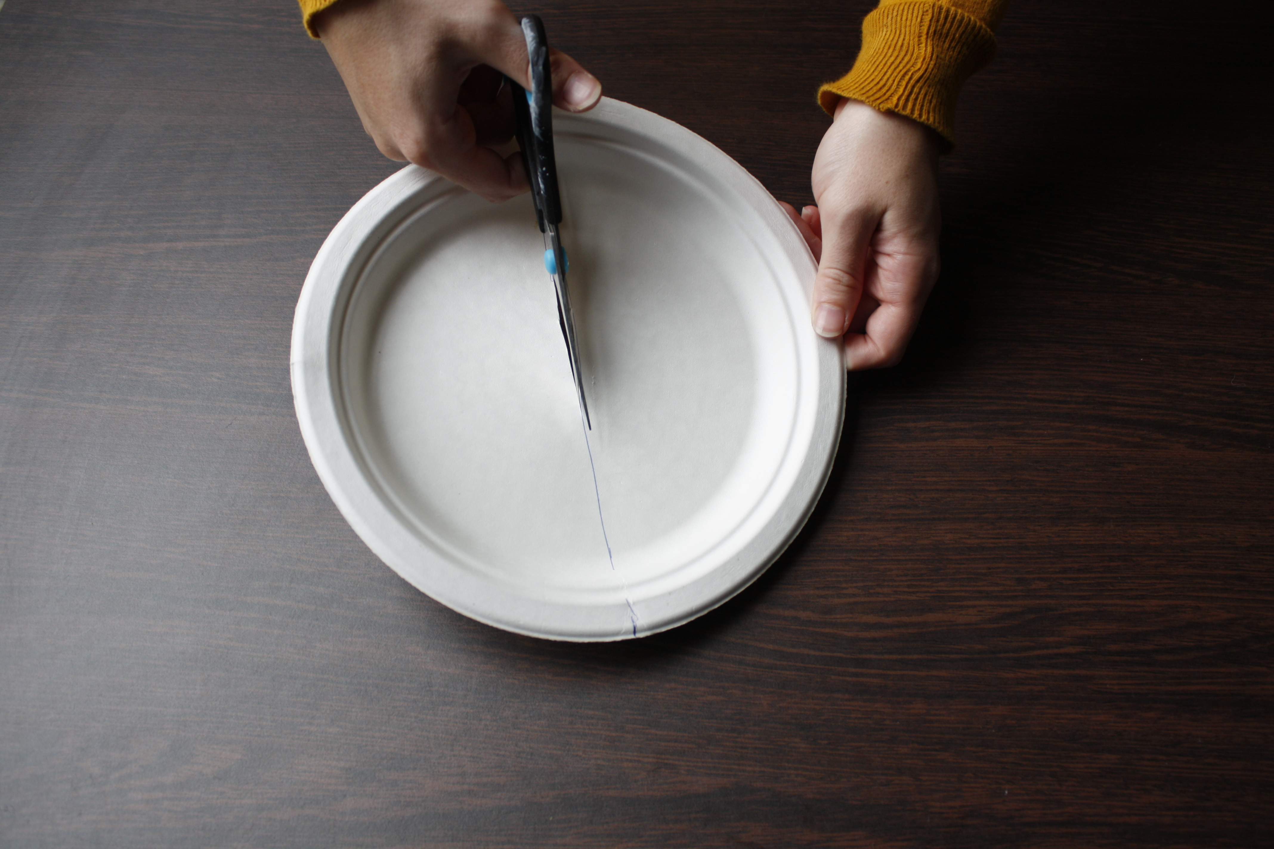 Activity Steps (Image 1) & Paper Plates: Moon Phases | Activities | UNAWE