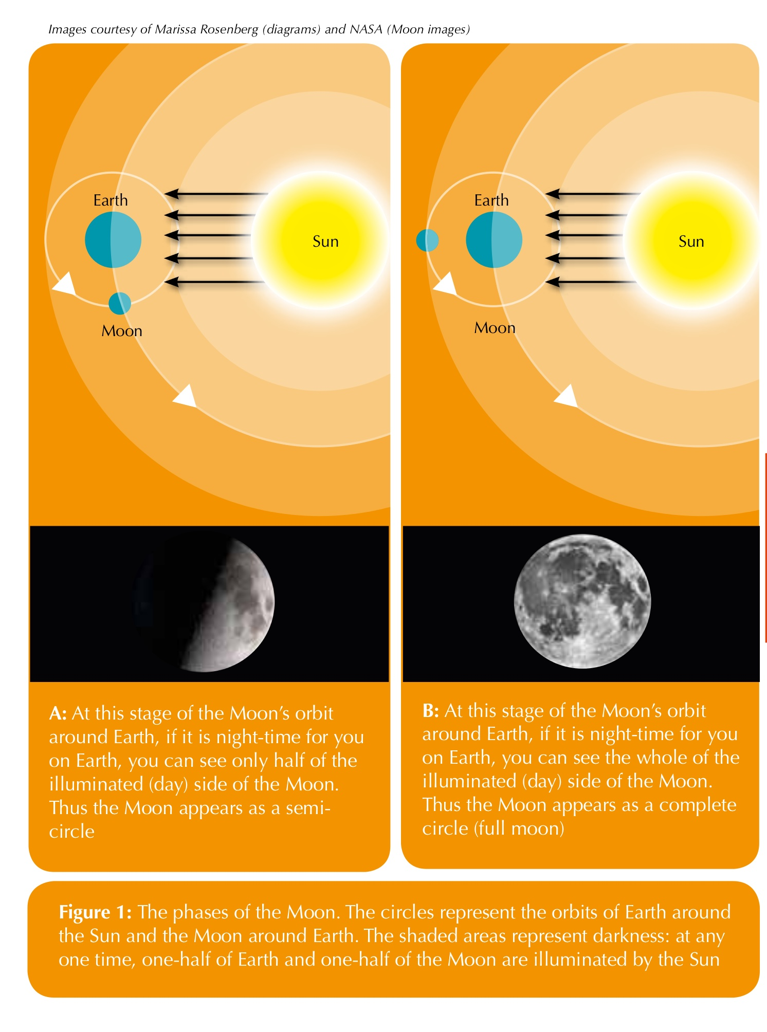 Creating eclipses in the classroom activities unawe for Solar lunar fishing