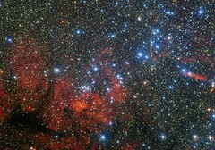 Fresh Look at a Young Star Cluster